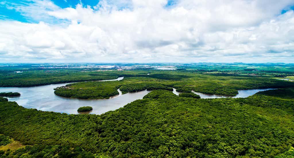 domiruthperutravel-amazon-river