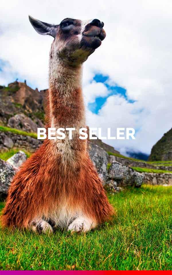 domiruthperutravel-grid-best-seller