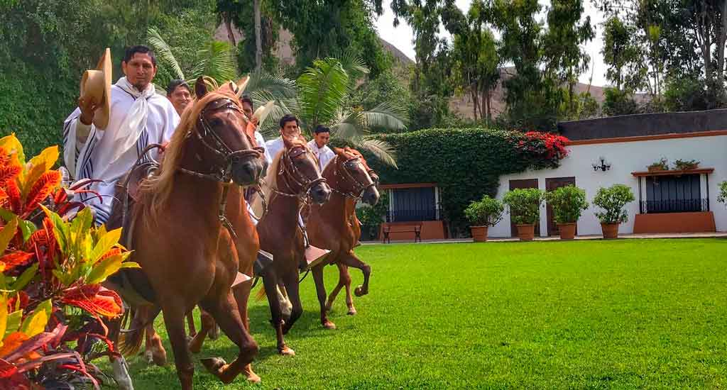domiruthperutravel-itinerary-ficus-hacienda